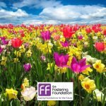 Easter Competition from the Fostering Foundation